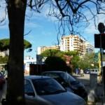Segnalate grate ostruite e alberi da potate in Via Amendola