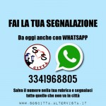 Da oggi anche su Whatsapp