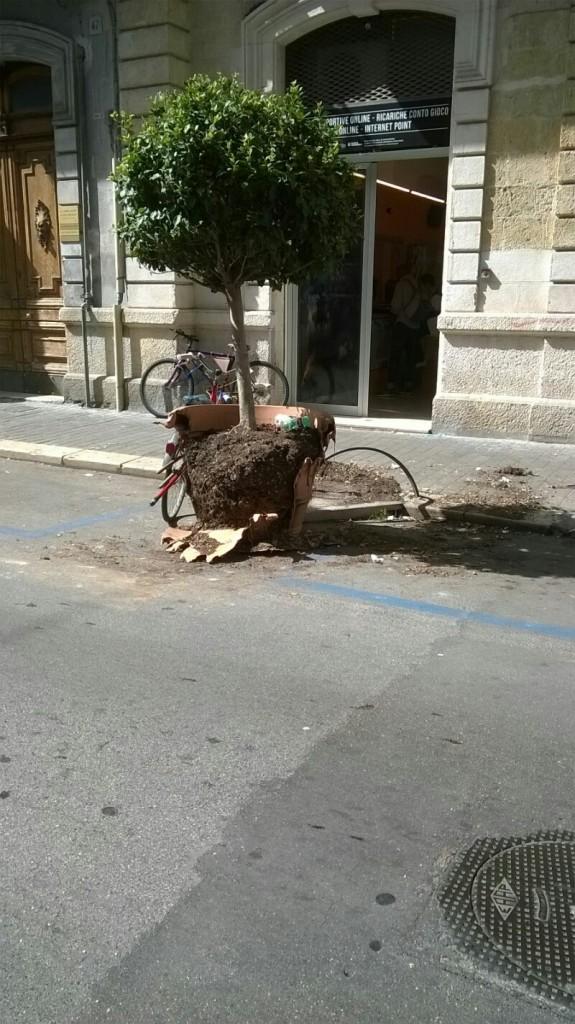 Distrutto vaso in via Manzoni