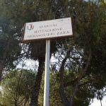 """AGGIORNAMENTO stato dei luoghi giardino """"Battaglione Bersaglieri Zara"""""""