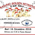 Natale con i Golden Retriever
