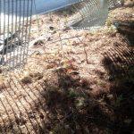 Pericolo parco Suglia: recinzione divelta da settimane