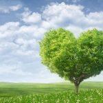 """""""Raccontiamoci la natura"""" il nuovo concorso targato Esecuzione Verde"""